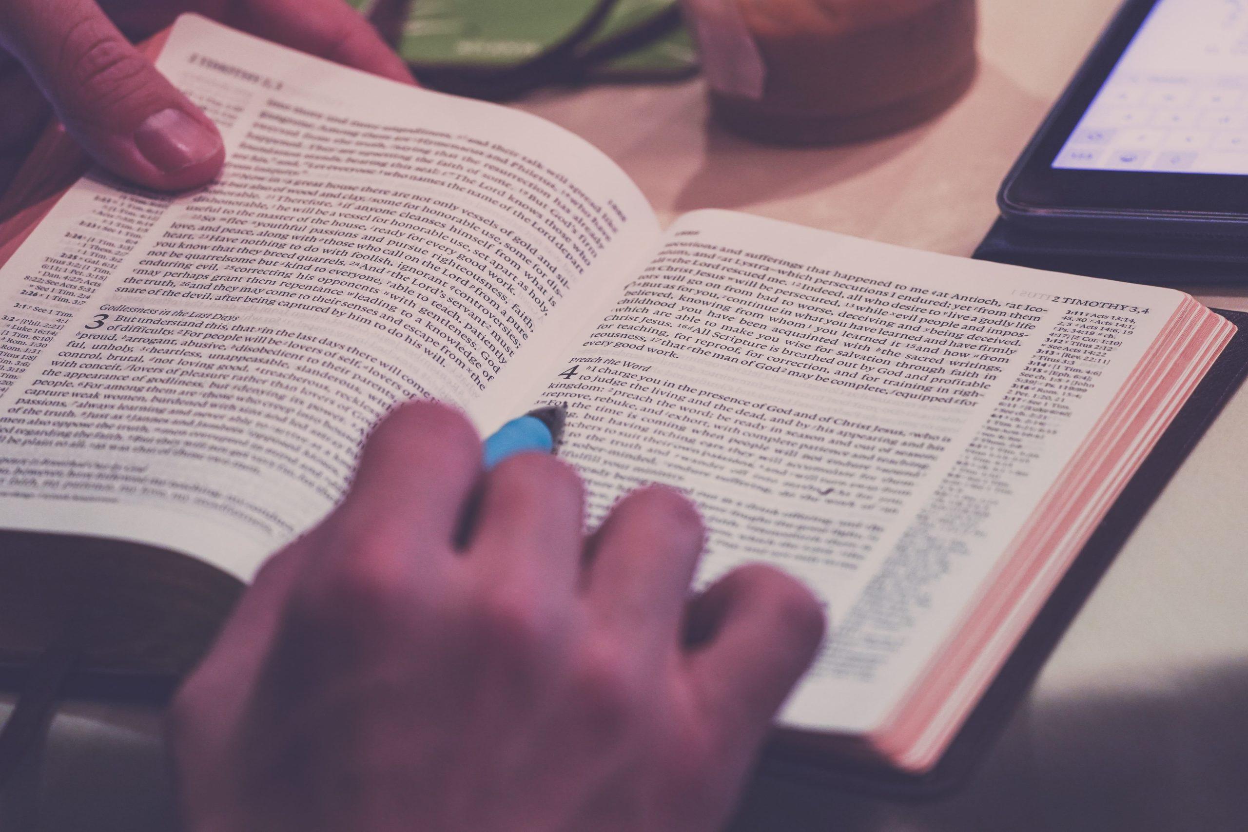 本を読んでいる,画像